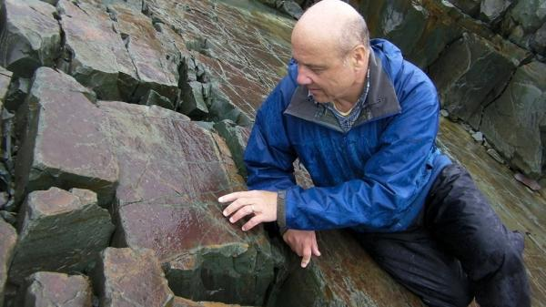<p> Guy Narbonne, a paleontologist at Queen's University in Ontario, inspects a fossil at the Mistaken Point Ecological Reserve in Newfoundland. It is filled with half-a-billion-year-old treasures like this one. </p>