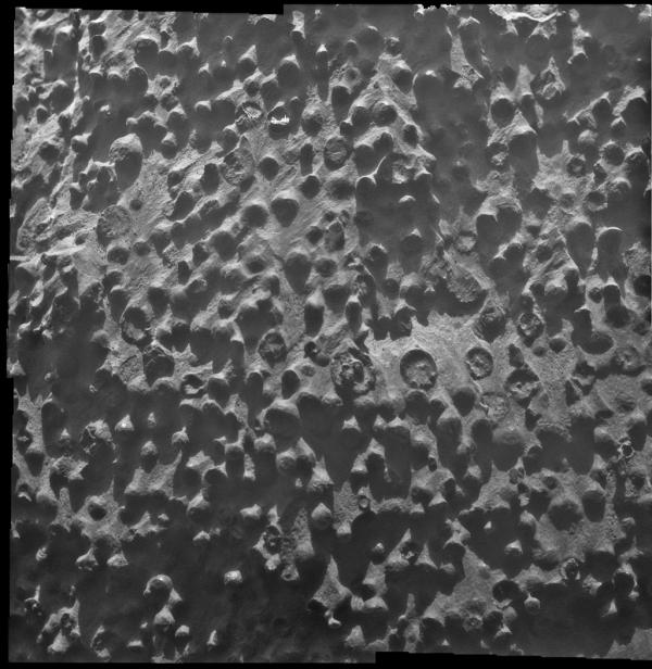<strong>Opportunity, 2004: </strong>Opportunity discovered tiny mineral spheres — nicknamed blueberries — poking out of rocks that were likely formed by water.  Researchers using Opportunity's science instruments identified them as concretions rich in the mineral hematite, deposited by water saturating the bedrock.