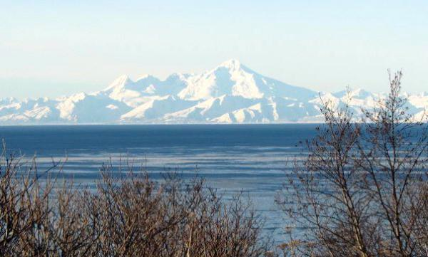 Bushlines are read from KBBI in scenic Homer, Alaska.