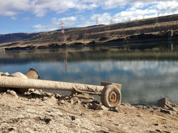 Becuase of the drawdown. this irrigation pipe for cherry orchards that lies four miles downstream from Rock Island Dam cannot reach water in the Wanapum pool.