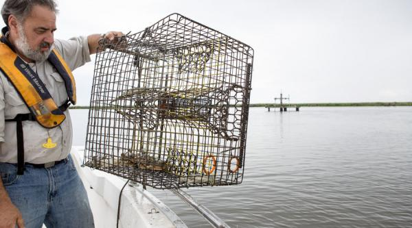 The canals have become tools for the local seafood and charter-fishing business, too. Dr. John Lopez of the Lake Pontchartrain Basin Foundation holds a crab trap pulled from a canal. A dormant natural-gas well is in the background.