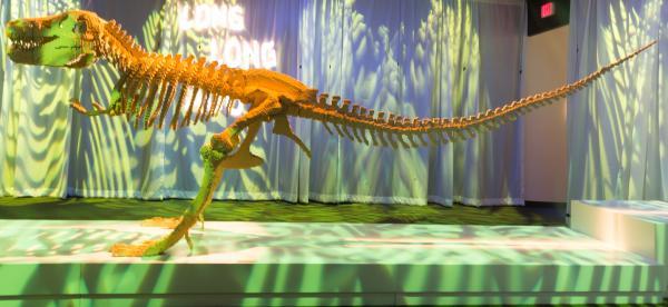 <em>Dinosaur Skeleton </em>by artist Nathan Sawaya.