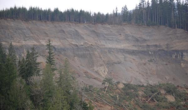The slide area where Saturday's deadly landslide occurred in Oso, Wash. Washington allowed logging with restriction prior to the slide. Oregon does not restrict logging on this particular type of landslide-prone terrain.