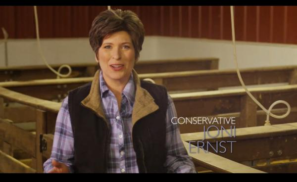 A lot more people now know who Iowa Republican Senate candidate Joni Ernst is, which was the point of the hog-castration line in her campaign ad.
