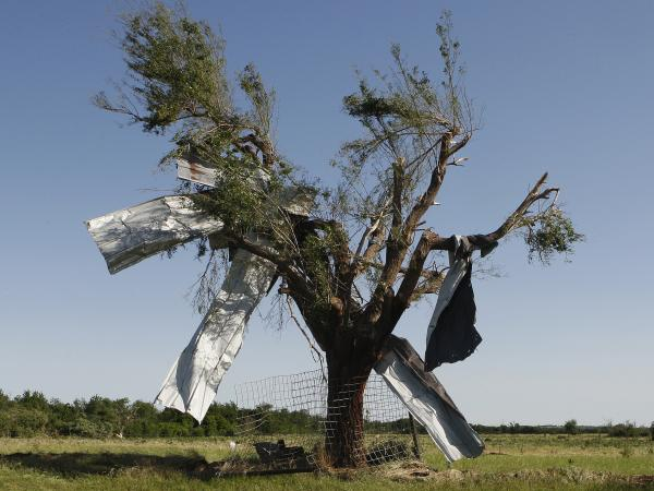 After the storm: Sheet metal that was torn off a building during Friday's tornado in El Reno, Okla., ended up caught in a tree.