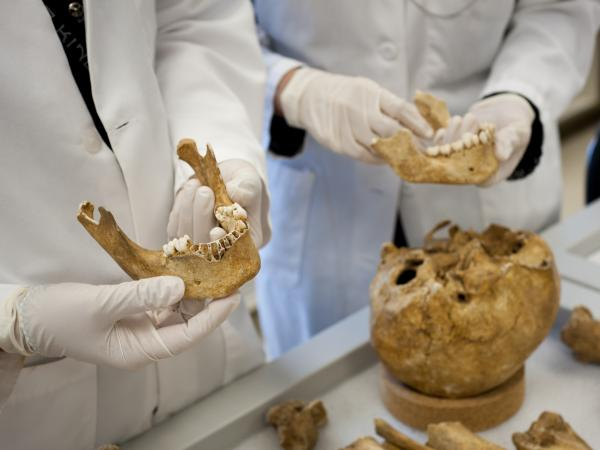 The process JPAC uses to identify remains includes historical research, archaeological analysis and forensic analysis. Using DNA is the last step of the process.