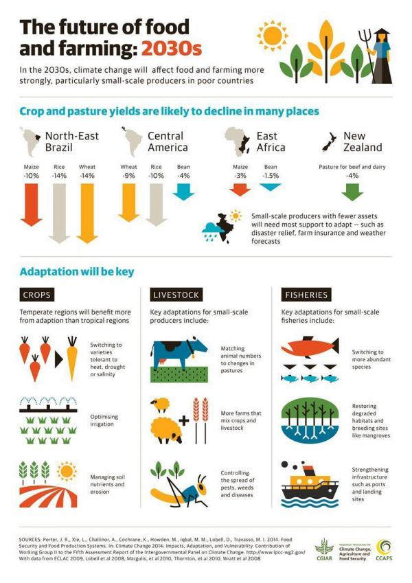 In the 2030s, climate change will affect food and farming more strongly, particularly small-scale in poor countries.