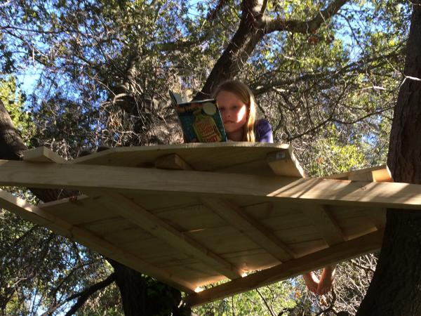 Steve Henn's daughter Faye in a treehouse, which they built together after he put away his smartphone for the weekend.
