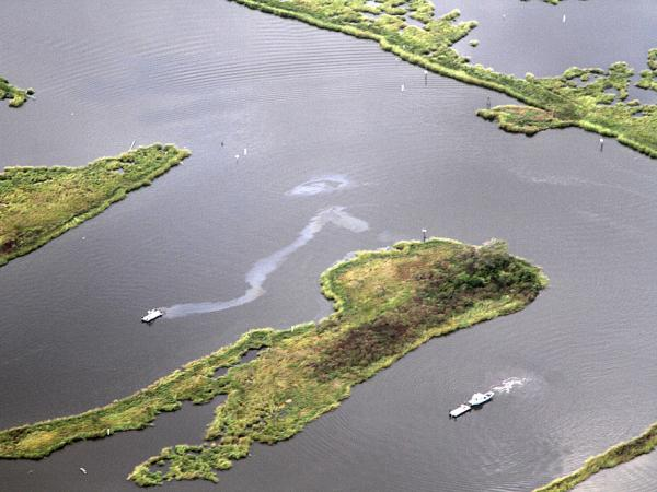 Louisiana relies largely on the oil industry to self-report leaks and spills. The Gulf Monitoring Consortium was formed to improve that effort and said it often finds smaller leaks like this one, near Golden Meadow, that go unreported by the companies.