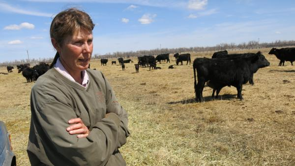 Cattle rancher Sharon Harvat says she's worried about how the Brazilian beef imports will impact her business.