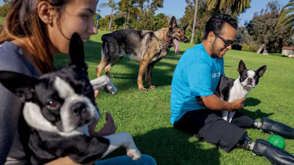 In this image from the June issue of <em>National Geographic</em>, Jose Armenta and his wife, Eliana, relax with their Boston terriers Oreo and Sassy, and Zenit, a German shepherd they adopted from the Marines.