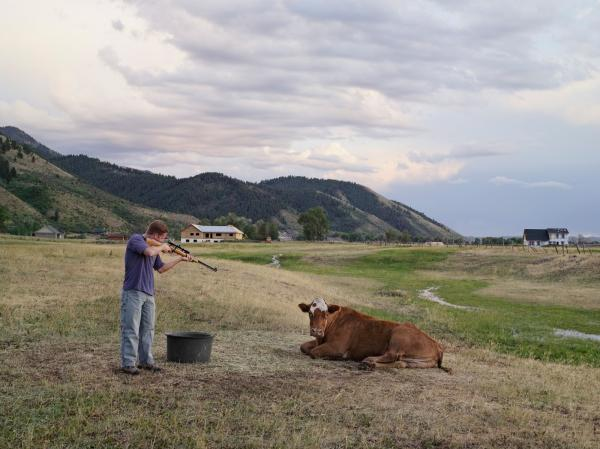 <em>Adam Killing a Cow, Mortensen Family Farm, Afton, Wyoming 2010</em>