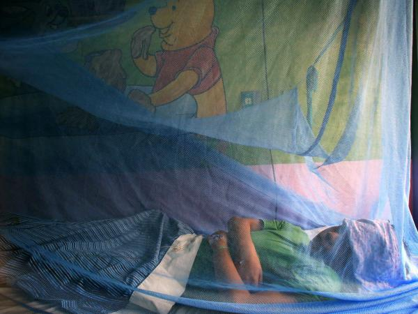 Kevin Flores, 11, remains under a mosquito net while being treated for dengue fever at La Mascota hospital in Managua, Nicaragua, last fall.