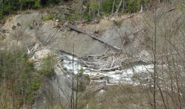 Landslides have blocked Canyon Creek in Whatcom County repeatedly, causing flooding that has destroyed homes downstream. For the past decade, the county has been in the process of buying out 31 homeowners in harm's way.