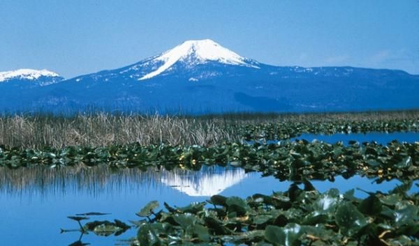 Upper Klamath National Wildlife Refuge will get more water under a pending Senate bill sponsored by Sen. Ron Wyden, D-OR.