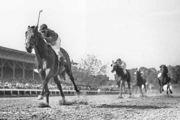 Citation, ridden by Eddie Arcado, races home an easy winner in the Belmont Stakes at Belmont Park racetrack in 1948. Citation won the race and the Triple Crown.