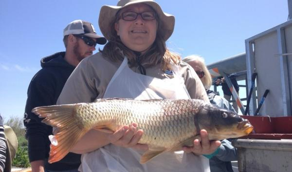 Fish biologist Linda Beck holds one of thousands of carp that were fished out of Malheur Lake in order to see if commercial fishing could be a viable solution to address the invasive carp.