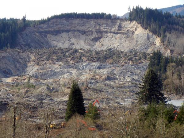 A view of the slope where the Oso landslide took place. (File photo)