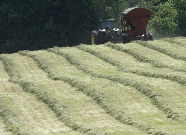 Hay and vegetable crops are benefitting from the weather.