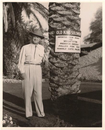 One of the early date moguls in the Coachella Valley, circa 1940s. The date palm is the oldest cultivated fruit tree, yet it often requires pollination by hand.