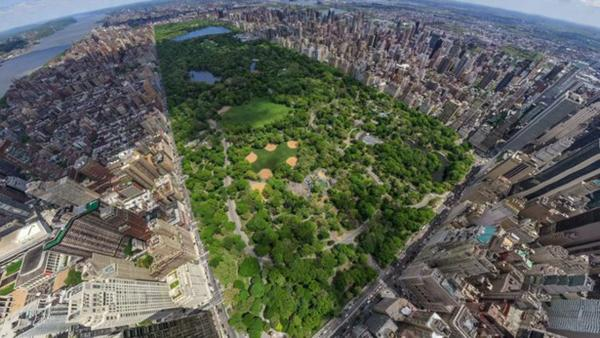 Landscape architect Frederick Law Olmsted designed some of America's most well known green spaces, including Central Park, a green oasis in the middle of busy Manhattan. (PBS)
