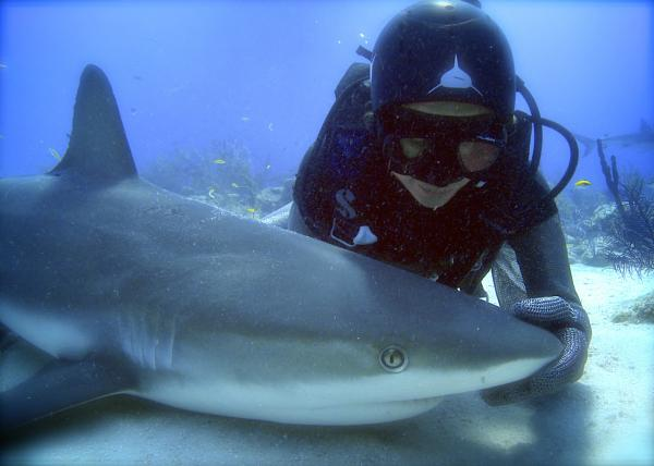 Madison Stewart with Caribbean reef shark in 'tonic immobility.' (Andy Casagrande/Kaufmann Productions Pty Ltd)