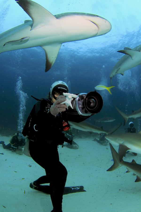 Madison Stewart filming Caribbean reef sharks. (Ernst Stewart)