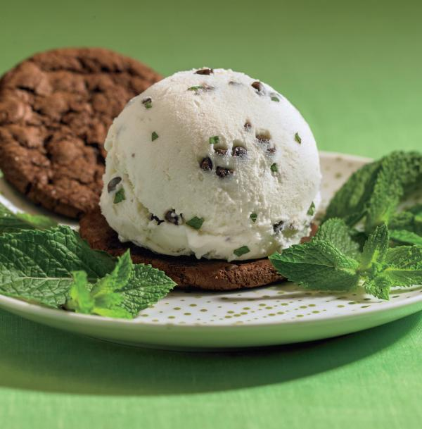 Dirty mint chip ice cream sandwich.
