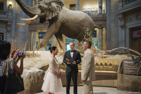Jennifer Miller and Michael Bennett hold a pop-up wedding at the Smithsonian Natural History museum in Washington, D.C.