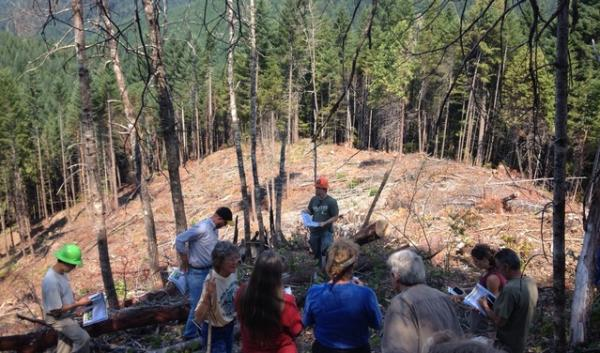 A group of foresters, conservationists and local landowners toured the Buck Rising site in Southern Oregon to see the effects of a pilot project aimed at increasing timber harvests without doing environmental damage.