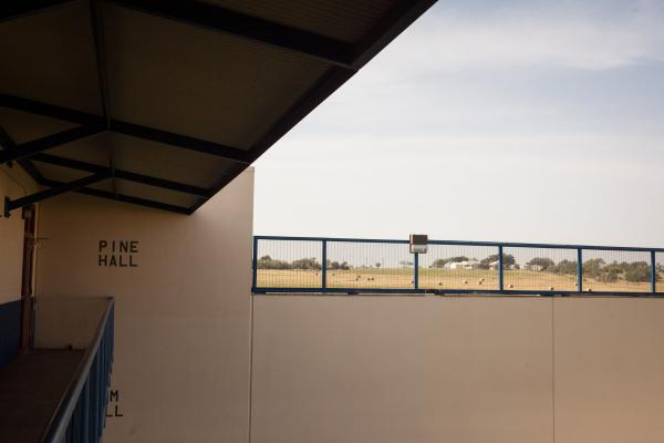 A view from the courtyard of the facility.