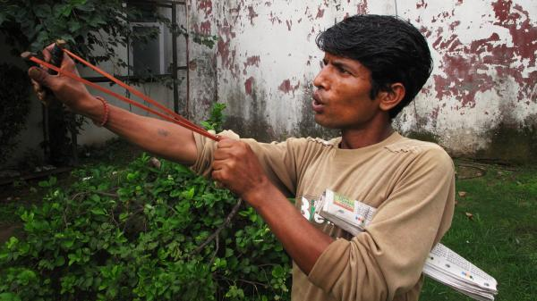 Mahendra Nath is one of 40 men in New Delhi who mimic the sounds of the aggressive langur monkey to scare away the smaller Rhesus monkeys that menace the city. The sling shot contains no actual shot — the aim is just to frighten away the monkeys.