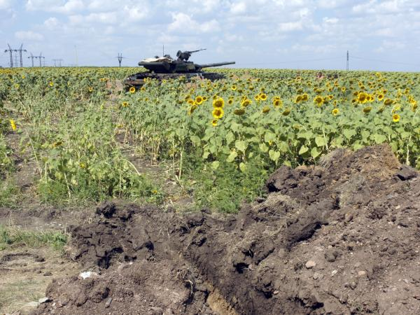 A Ukrainian army tank sits in position in a sunflower field Aug. 5 near the village of Maryinka, a suburb of Donetsk in eastern Ukraine.