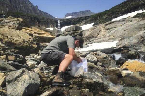 Joe Giersch, an ecologist with the U.S. Geological Survey, studies stoneflies that live only in the melt from glaciers and snowpack in the northern Rockies.