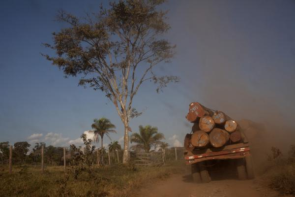 A truck takes logs to the town of Ascencion de Guarayos in the Bolivian Amazon jungle.