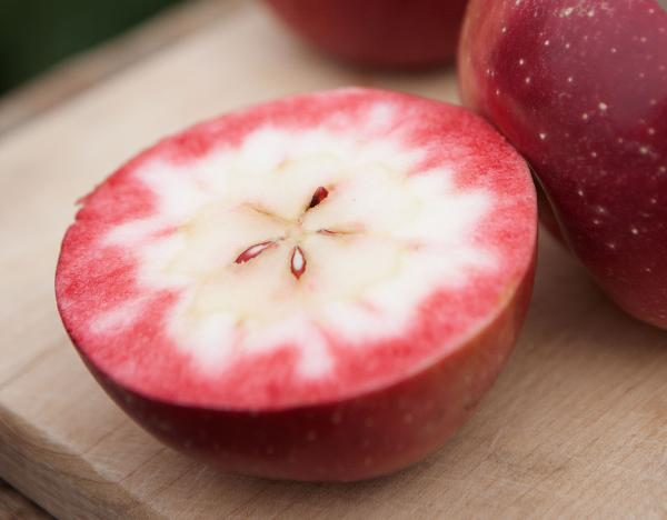 Surprise! This is what it looks like when you cut into a Redfield apple.