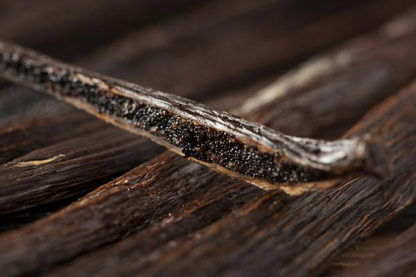 The vanilla bean, along with cacao, originated in the Americas and is now cultivated in several countries around the world. Here, the seeds inside the pod are shown.