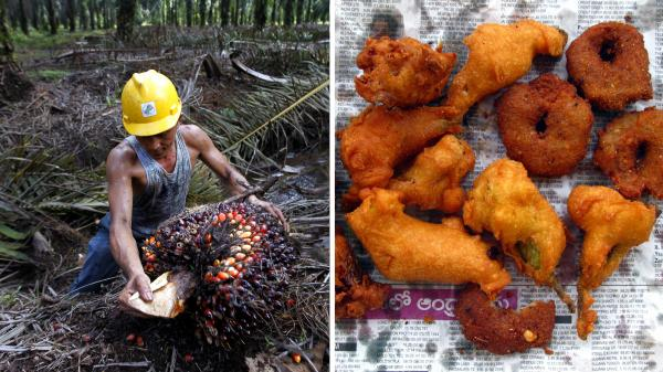 At left, an Indonesian farmer harvests palm oil near Tesso Nilo National Park, Indonesia. At right, onion <em>pakoras</em> made with palm oil in India.