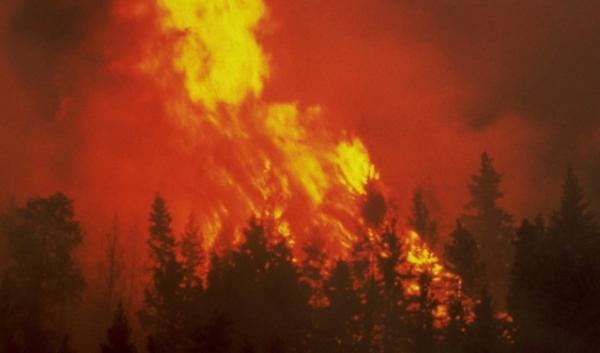 Scientists at the Pacific Northwest Climate Science Conference in Seattle said modeling suggests large wildfires are increasingly likely to occur going forward.