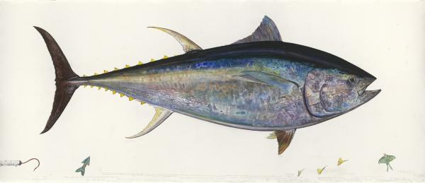 Prosek painted <em>Bluefin Tuna </em>in 2004 from a specimen he harpooned in Cape Cod near Barnstable, Mass. The massive life-size image depicts a 750-pound fish more than 9 feet long.
