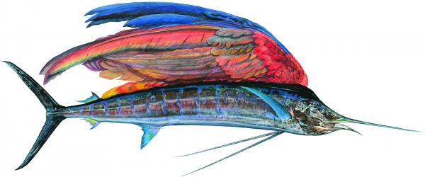"<em>Sailfishe,</em> a monumental 10-foot painting of a hybrid creature, shows a glistening life-size Pacific sailfish that Prosek caught in Mexico — only instead of a dorsel fin, the fish has a colorful parrot wing. ""With all that we know now, imagination is becoming extinct,"" says Prosek. ""I am trying to forget. I am pretending to be a naturalist from a time past."""