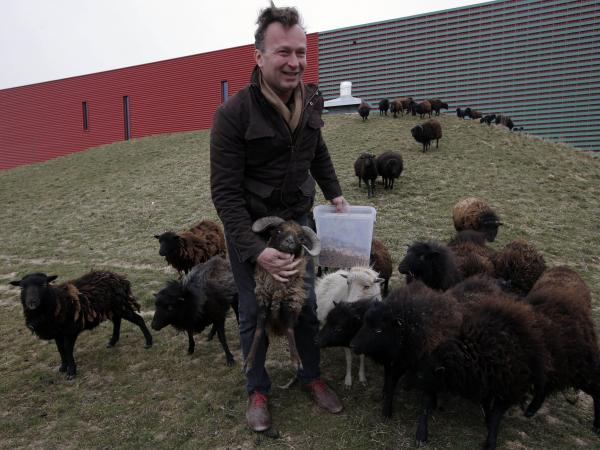 "Sylvain Girard, owner of EcoMouton, shows his flock ""mowing"" around a truck warehouse."
