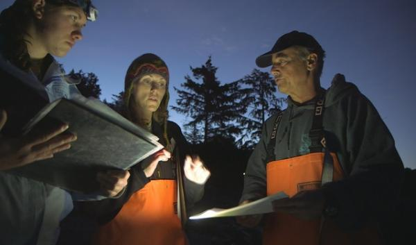 To count Alaska's intertidal starfish at low-tide, researchers have to start their surveys in the pre-dawn darkness.