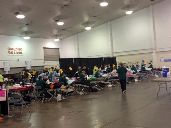 "More than 800 patients were served on the first day of the Florida Dental Association's ""Mission of Mercy"" event."