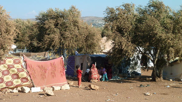 Syrian refugees gather amid olive trees in an area controlled by the rebel Free Syrian Army, in northern Syria near the Turkish border, on Sept. 25. The area has become a way station for Syrian refugees pushed out of neighboring Turkey.
