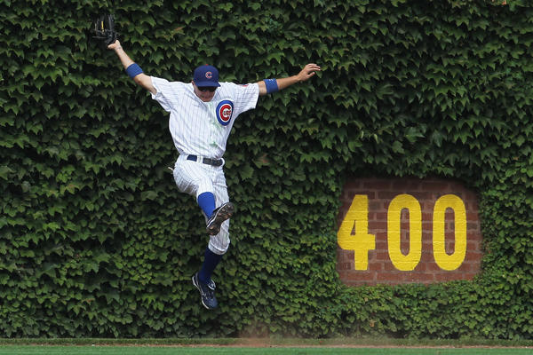 Cubs center fielder Tony Campana falls into Wrigley's ivy-covered wall after making a catch in 2011.