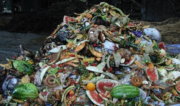 This pile of food waste from Portland businesses will end up generating electricity in a methane digester 100 miles south of town.