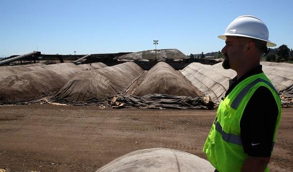 Lawrence Klein, facility manager of the Seattle-based composting company Cedar Grove, walks past rows of maturing compost. Plastic and metal in the food waste adds to the cost of turning waste into compost for yards and gardens.