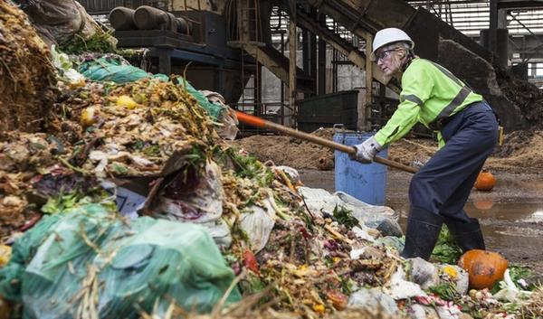 Zdenka Novak, a Recology employee contracted by Metro, pulls unacceptable plastic and cardboard out of the commercial food waste piles at the Metro Central transfer station.