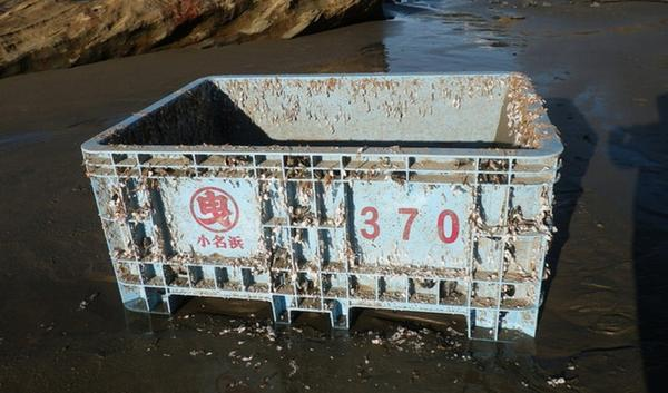 Shipping tote dislodged during the Japanese tsunami washed ashore near Seal Rock, Ore. in late November. It was covered with about 200 blue mussels.